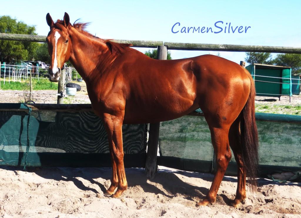 Carmen Silver